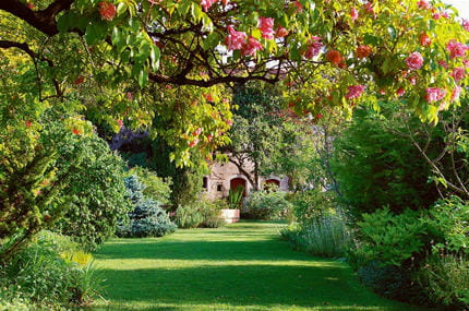 La propri t jardiner sans arroser journal des femmes for Beaux arbres de jardin