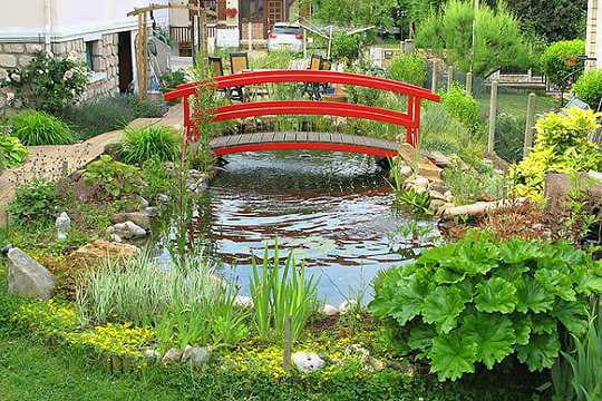 L 39 t autour du bassin vos plus beaux jardins en t journal des femmes for Bassin de jardin d occasion