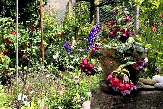 A manger et voir vos plus beaux jardins en t journal des femmes - Le petit jardin quilt pattern calais ...
