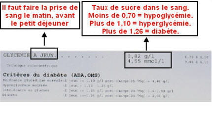 comment comprendre ses analyses de sang