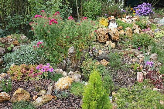 jardin de rocaille photos - la rocaille en septembre