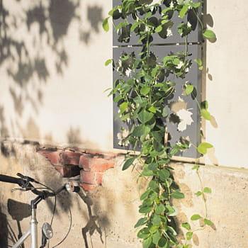 Des treillages feuillage d corations pour un beau - Deco jardin journal des femmes toulouse ...