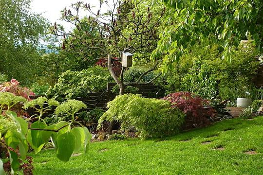 De petits mais impressionnants rables le jardin des grandes vignes d 39 anne marie journal des - Le jardin des grandes vignes ...