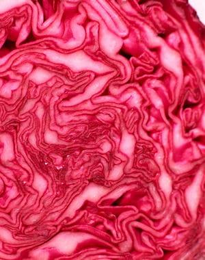 le chou rouge, un beau légume à cuisiner.