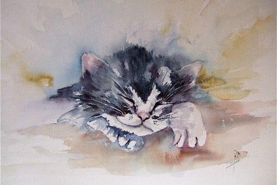 18 top peinture aquarelle -#main