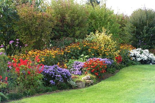 Un jardin tr s pimpant elisez le plus beau jardin de lecteurs journal des femmes - Le beau jardin du paresseux ...