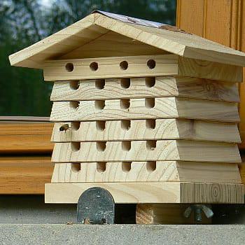 une petite ruche pour abeilles solitaires. Black Bedroom Furniture Sets. Home Design Ideas