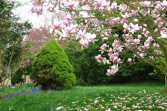 Au paradis des fleurs les plus beaux jardins des for Les jardin de catherine