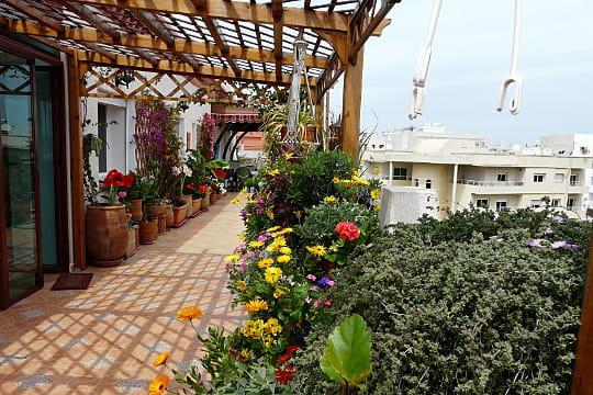 La terrasse d 39 appartement terrasse couverte les - Deco jardin journal des femmes toulouse ...