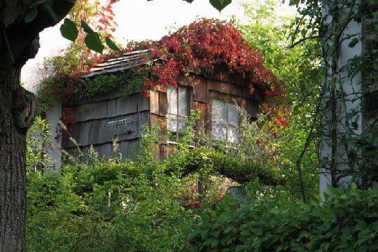 Une cabane de jardin au dessus du garage l 39 l gant jardin de jacky journal des femmes - Cabane jardin terrasse lille ...