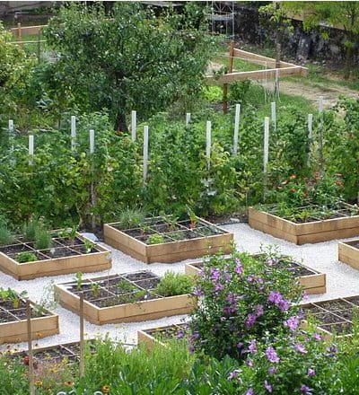 Trucs et astuces pour l 39 entretien cr ation du potager en for 1001 trucs et astuces pour le jardin