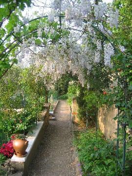 direction le jardin potager le jardin enchanteur de lolita journal des femmes. Black Bedroom Furniture Sets. Home Design Ideas