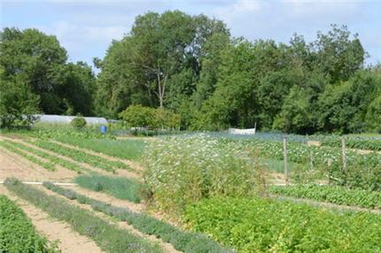 Le jardin du chef est une ancienne terre maraîchère d'un hectare