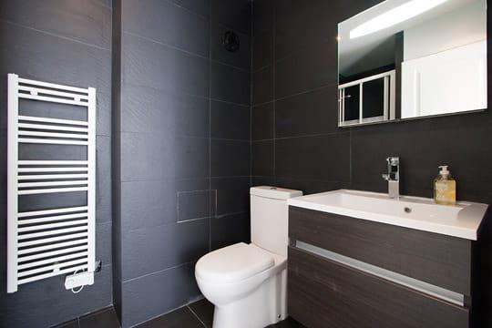 une salle d 39 eau tr s masculine 20 m tout confort journal des femmes. Black Bedroom Furniture Sets. Home Design Ideas