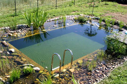 une piscine bio en auvergne vos magnifiques piscines