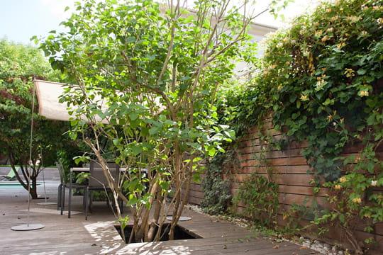terrasses et piscine image jardin terrasses piscine bois 914136 jpg