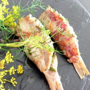 Petit poisson rouge 25 recettes pour bien finir les for Poisson rouge vacances nourriture