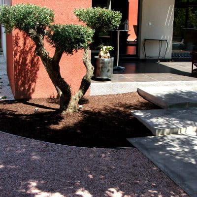 Un olivier aux allures de bonsa am nagement d 39 un jardin zen journal des femmes - Deco jardin olivier nanterre ...