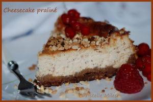cheesecake praline 300